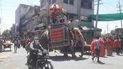 Ấn Độ: Chú rể cưỡi voi đi đón dâu