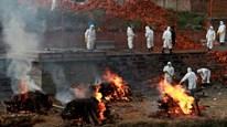 Thế giới 7 ngày: Ấn Độ, ĐNA vật lộn giữa vực thẳm đại dịch
