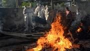 Covid-19: Tử thần vẫn đeo bám, Ấn Độ đã tính nới lỏng phong tỏa