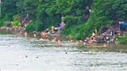 Sông Hồng 5h chiều: Dân Hà Nội đi 'bơi giải nhiệt' như ở công viên nước