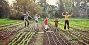 Quốc gia nhỏ bé này đã thay đổi nền nông nghiệp cả thế giới