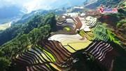 Mù Cang Chải lung linh sắc màu ruộng bậc thang mùa nước đổ