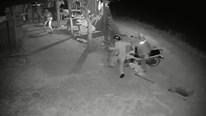 Trộm chó hung hãn chống trả chủ nhà ở Nghệ An
