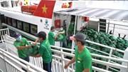 Tàu cao tốc 'đội mưa' chuyển hàng chục tấn rau, củ vào TP. HCM