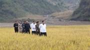 Mưa lũ càn quét Triều Tiên, Chủ tịch Kim Jong Un ra lệnh hỗ trợ toàn lực