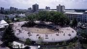 Trường mầm non trong mơ ở Nhật Bản, trẻ chạy nhảy thỏa thích trên mái nhà
