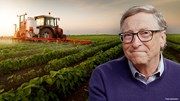 Vì sao các tỷ phú Mỹ thi nhau đổ tiền tấn mua đất nông nghiệp?